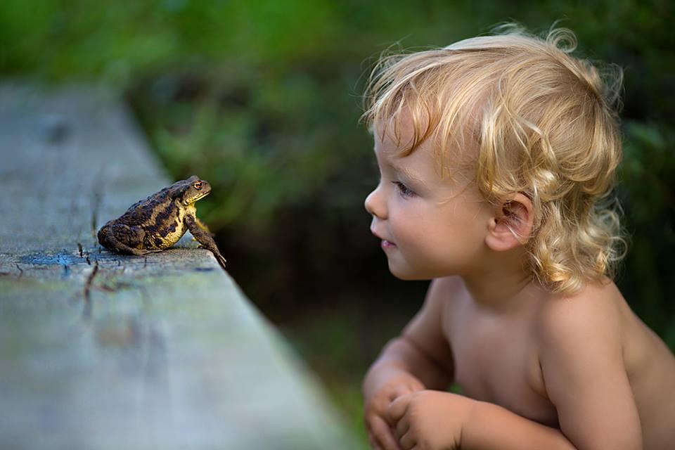Любознательный ребенок